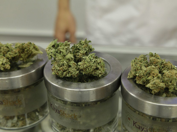 Why Buy Marijuana Online